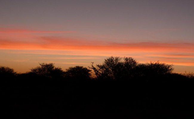 namibie-2011-www-hoogstinstravel-nl