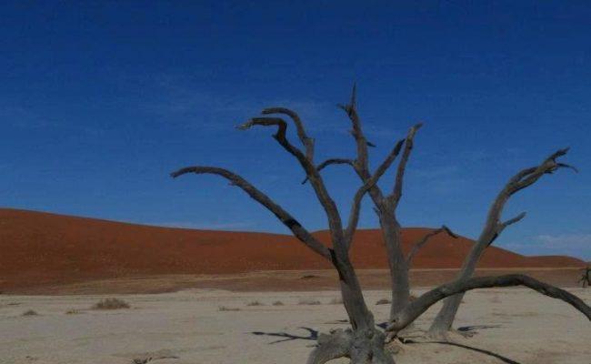namibie-2011-www-hoogstinstravel-nl_23